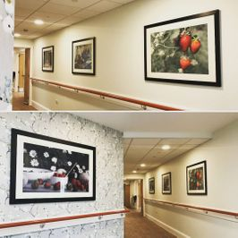 Installation of framed fine art for care homes hospitality corporate c